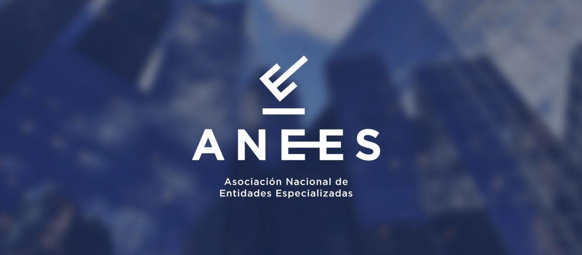 ANEES-portada